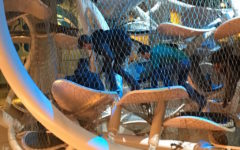 Liberty Science Center trip reinforces real-life math & science
