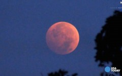 Many stay awake to observe Blood Moon