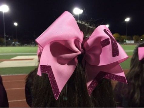The cheerleaders wear pink bows to remind the audience how early detection can save a life.