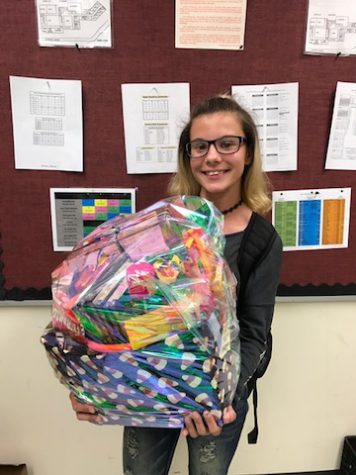 The winner of the junior class Halloween Basket Raffle is Beth Zuwatsky.