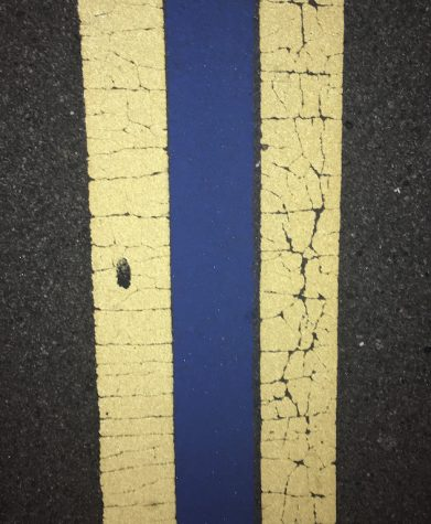 Blue street line symbolizes local community support for law enforcement