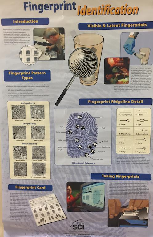 Forensics+students+learn+investigation+techniques+such+as+how+to+analyze+fingerprints.