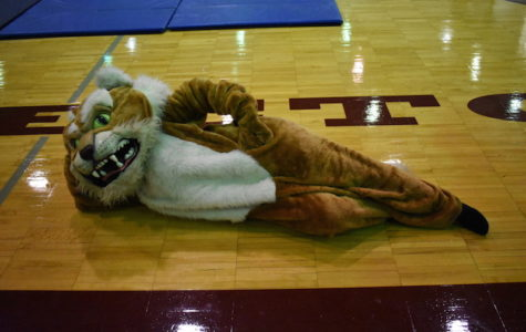 The Becton Wildcat puts on a performance during the fall pep rally.