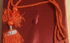 Multi-colored graduation cords to be worn at 2018 commencement ceremony