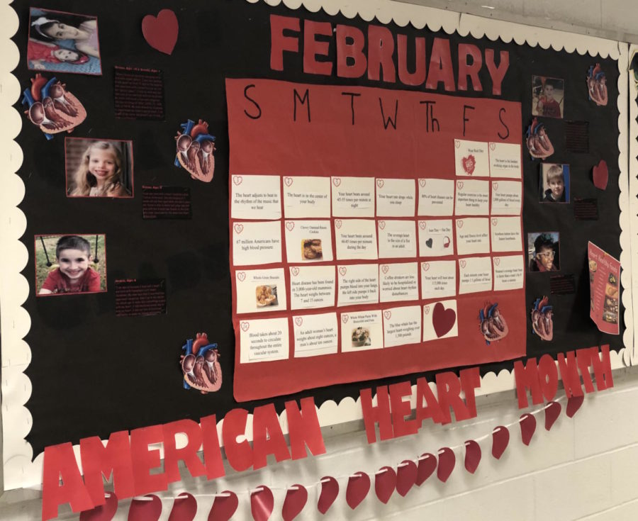 Ms. O'Driscoll and the junior class created a bulletin board to show their support for all those who suffer from heart disease.